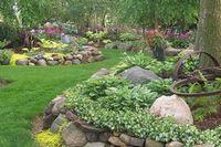 Цветники и цветочные композиции как элемент ландшафтного озеленения.
