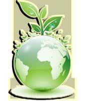 Моя зелёная планета, или как спасти землю от пищевого мусора