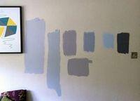 Нюансы процесса покраски стен и пути выхода из непредвиденных ситуаций в ходе работы