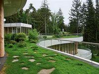 Озеленение крыш зданий