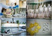 Проблемы качества питьевой воды. анализ качества воды, нормы определения качества воды