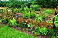Сад мечты в английском стиле