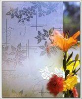 Выбираем керамическое покрытие для отделки стен